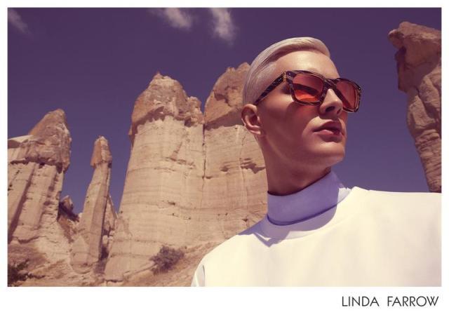 linda-farrow-spring-summer-2014-campaign-001